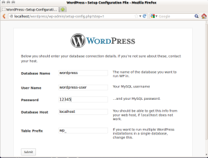 wordpress-setup-3