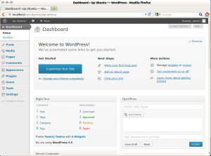 wordpress-setup-7